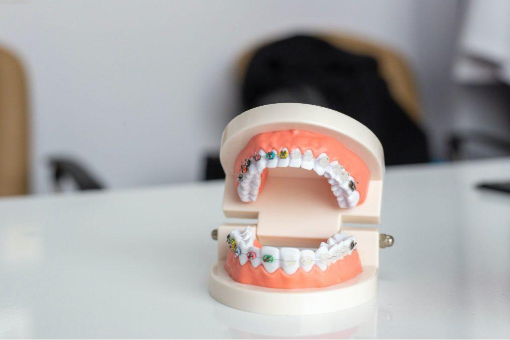 Dentist and Orthodontist